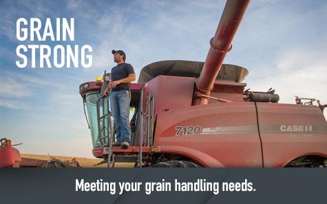 Grain Strong